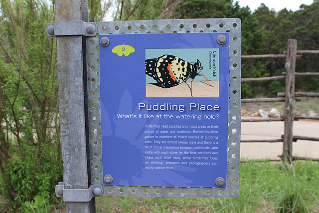 Butterfly Puddling Place sign at the Lady Bird Johnson Wildflower Center in Austin