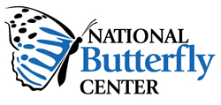 The National Butterfly Center in Mission, Texas ... click to visit their website for more information